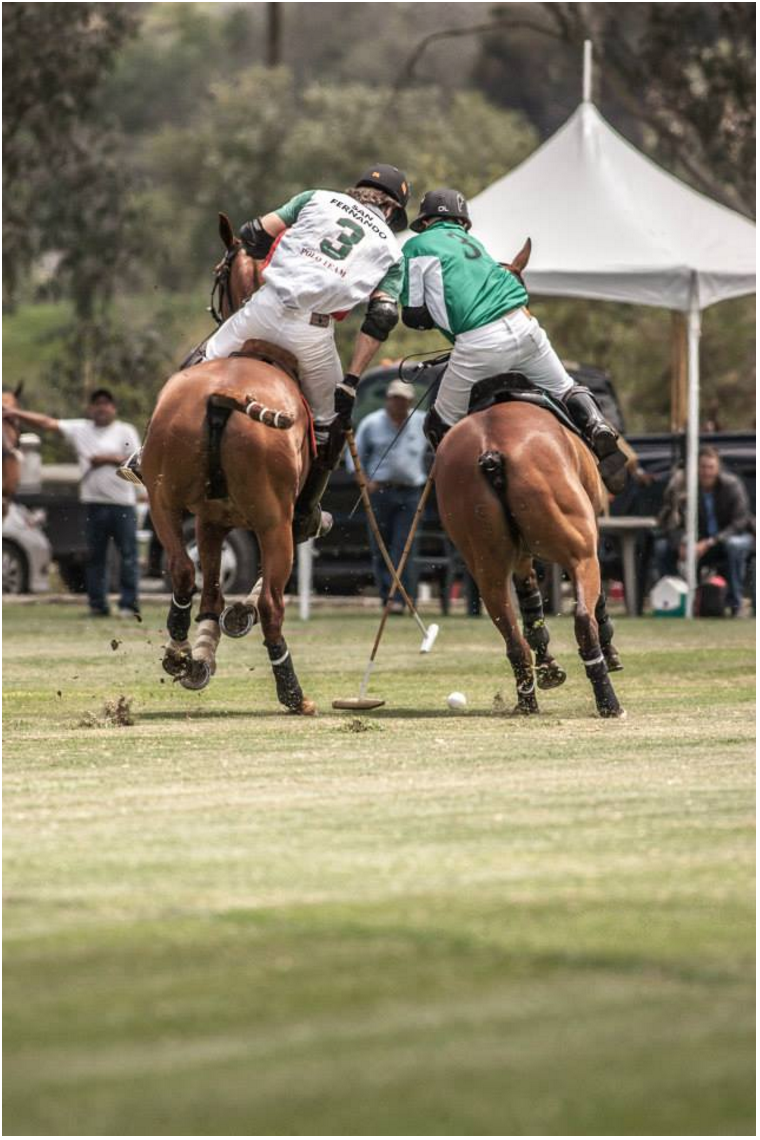 Photo Courtesy of San Diego Polo's Facebook page. Both Number 3s battling it out for the ball near the goal. White #3 is our HorseNetwork Polo Celebrity, Tarzan.